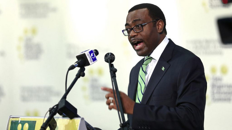 AU endorses Nigeria's Akinwumi Adesina as AfDB President for second term